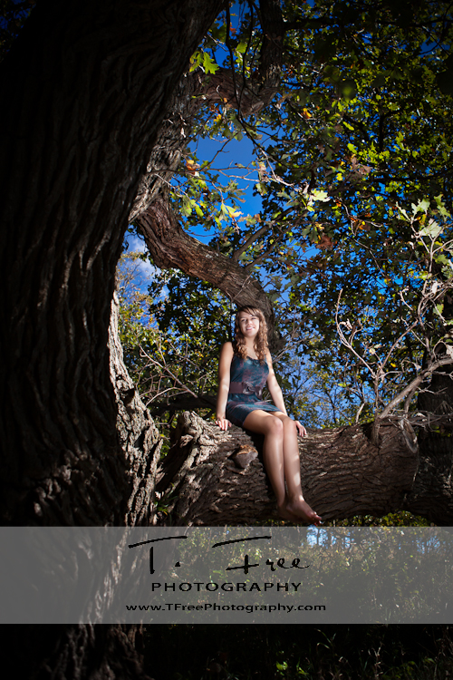 Unique senior picture of a senior girl in a tree with a dress on taken near Omaha Nebraska.