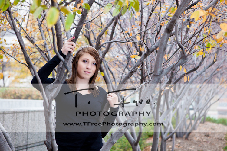 Beautiful fall senior photo with trees and leaves taken near downtown Omaha Nebraska.