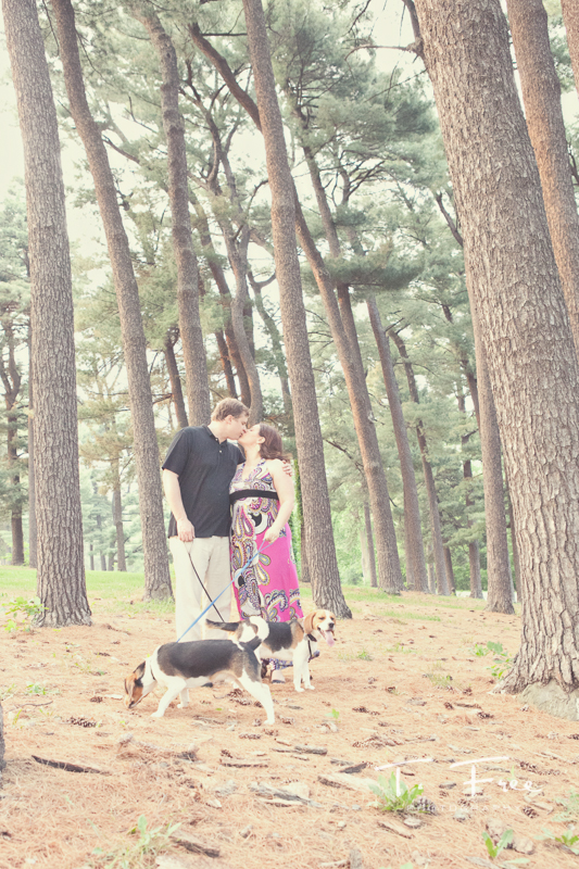 Outdoor engagement photo shoot with tall pine trees near the university of nebraska omaha campus.