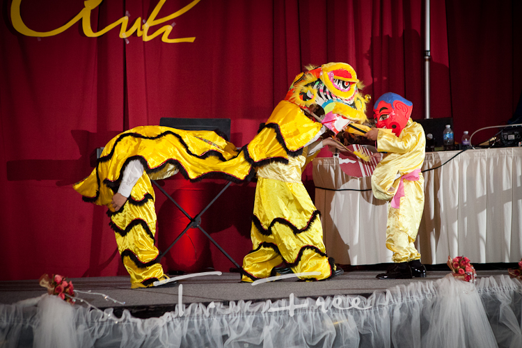 Traditional vietnamese dragon dance performed at this Council Bluffs Iowa wedding reception.