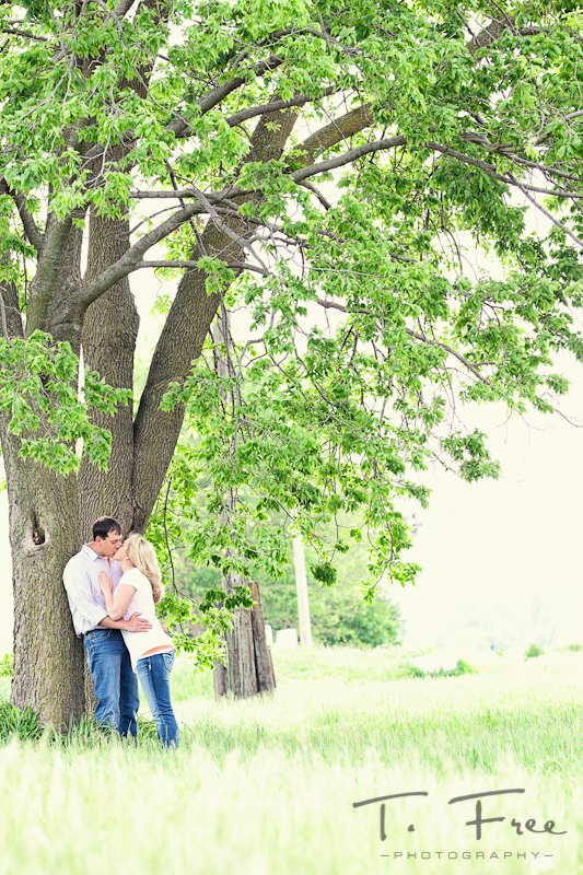 Awesome engagement picture of couple kissing under a huge tree in Hooper Nebraska.
