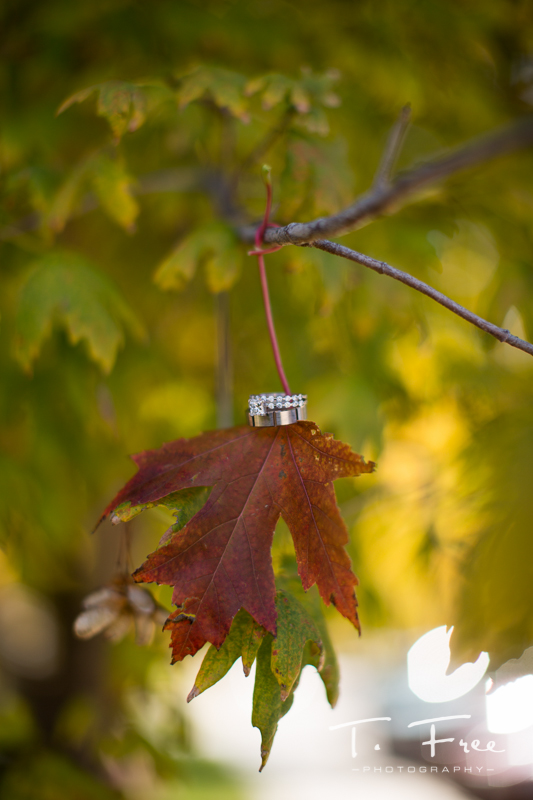 Creative fall wedding ring shot.